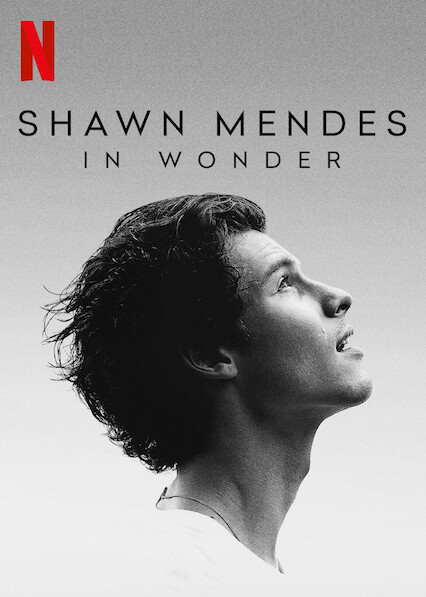 Shawn Mendes: In Wonder