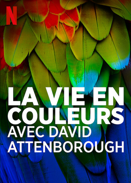 la-vie-en-couleurs-avec-david-attenborough